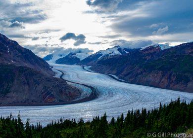 Stewart to Salmon Glacier, BC