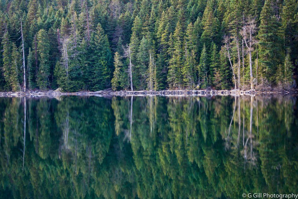Birkenhead Provincial Park