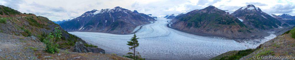 Salmon Glacier, Summit viewpoint