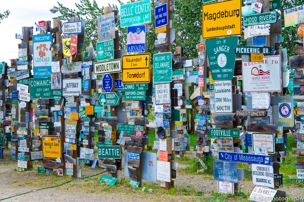 Sign Post Forest