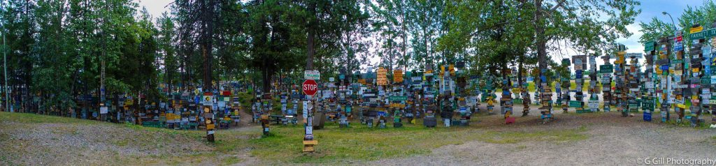 Panorama Sign Post Forest
